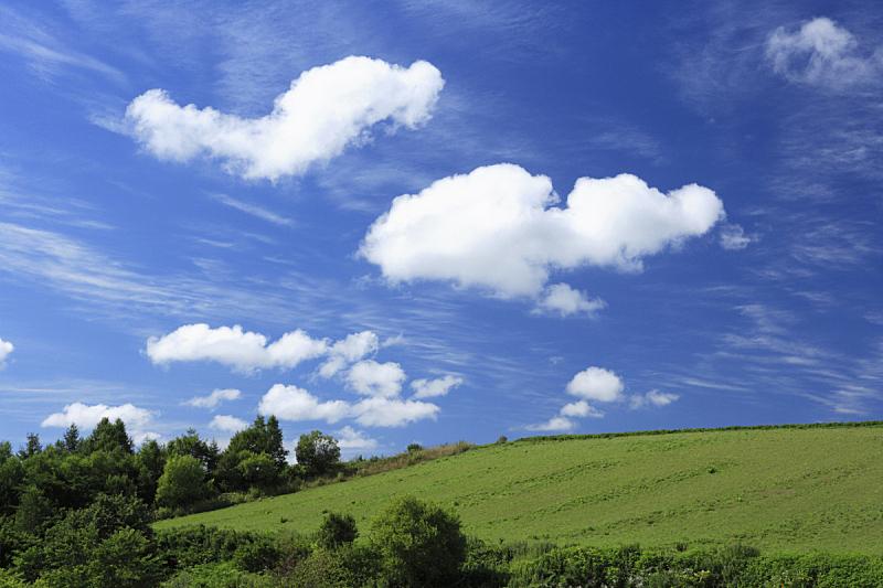 云,草地,美瑛町,自然,天空,高原,水平画幅,绿色,地形,山