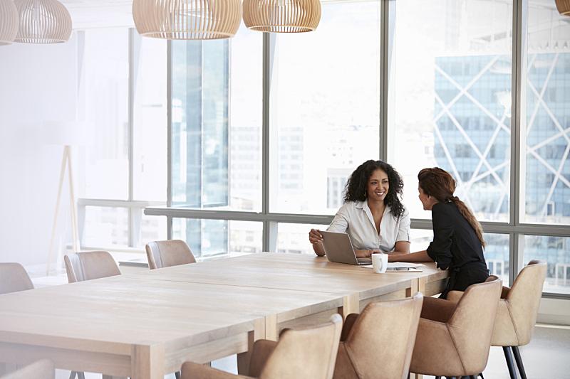 两个人,女商人,会议,会议室,使用手提电脑,商务会议,仅女人,经理,人,公司企业