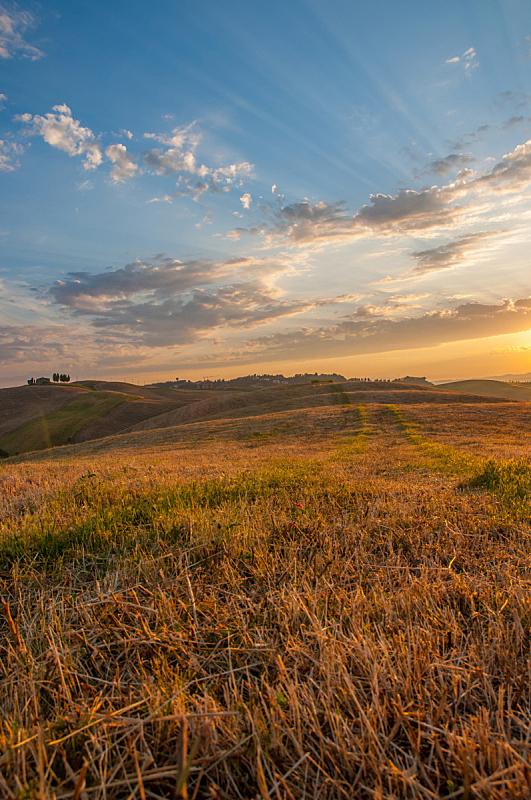 托斯卡纳区,轻的,意大利,早晨,自然,垂直画幅,天空,草地,山,无人