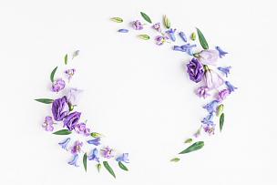 紫色,花环,白色背景,多样,丁香花,鲜花盛开,花纹,国际妇女节,风信子,母亲节