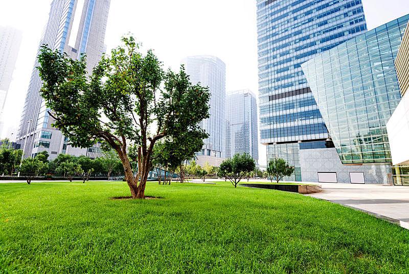 现代,公园,建筑外部,自然美,天空,留白,未来,草坪,夏天,草