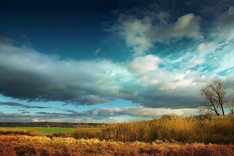秋天,云,天空,公园,水平画幅,无人,草坪,户外,草,云景