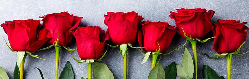 情人节,玫瑰,红色,背景,灰色,概念,风景,石头,爱,上装
