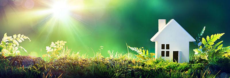 环境保护,园林,房屋,住房,苔藓,文档,重新造林,房地产,草,全景