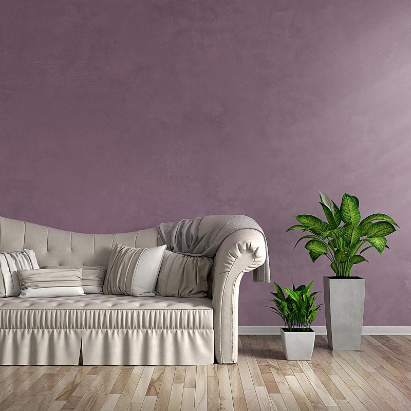沙发,起居室,盆栽植物,门厅,正面视角,留白,形状,墙,无人