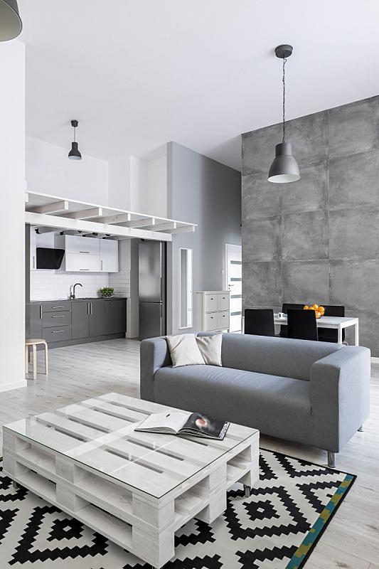 沙发,灰色,起居室,液压车,开放式设计,茶几,混凝土墙,软垫,垂直画幅,新的