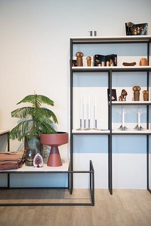 公寓,高雅,时尚,斯堪的纳维亚人,斯堪的纳维亚半岛,边框,复古风格,模板,现代,植物