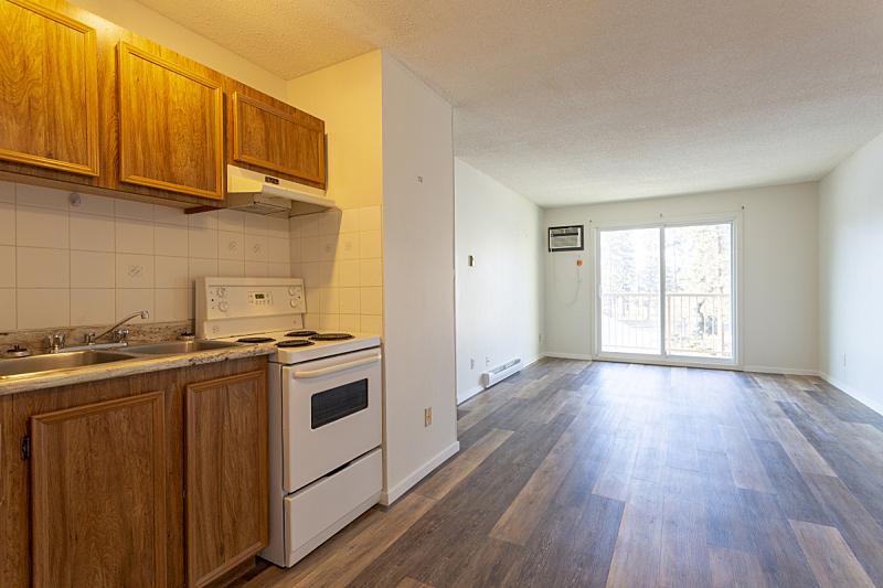 公寓,空的,空白的,住宅房间,冰箱,舒服,地板,简单,炊具,住宅内部
