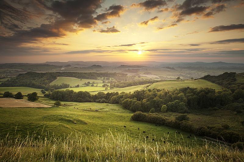 英格兰,绿色,山,多尔斯特,在上面,多塞特郡,田园风光,丘陵起伏地形,地形,田地