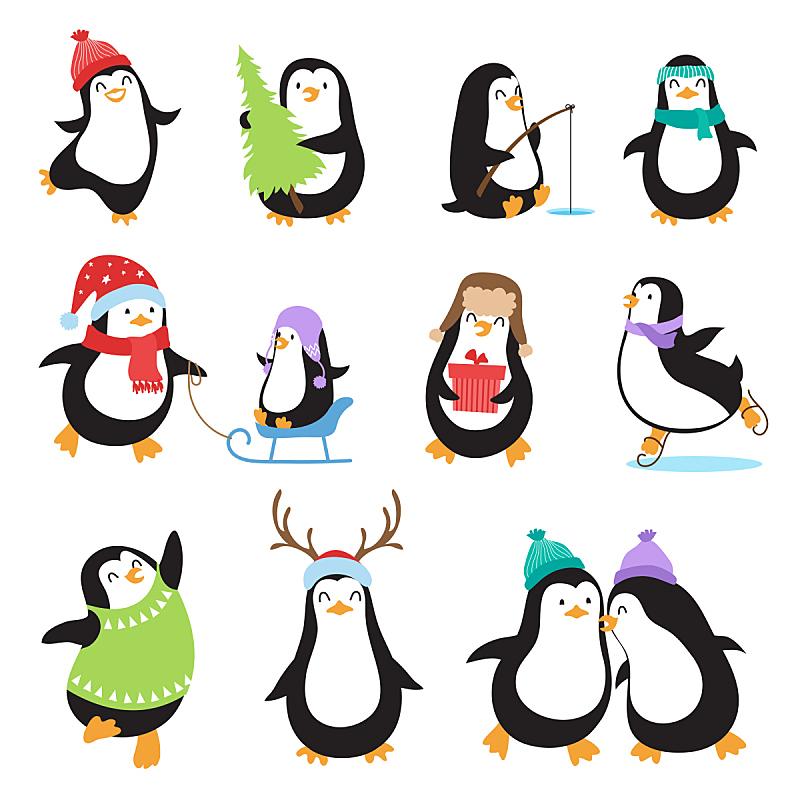 企鹅,卡通,矢量,可爱的,动物,绘画插图,新的,性格,计算机制图