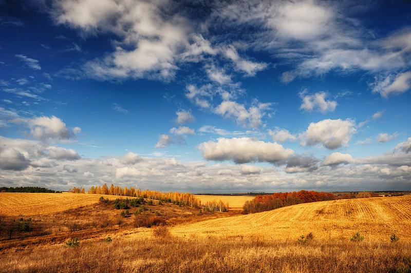 山,田地,秋天,白桦,天空,小树林,自然美,美,水平画幅,形状