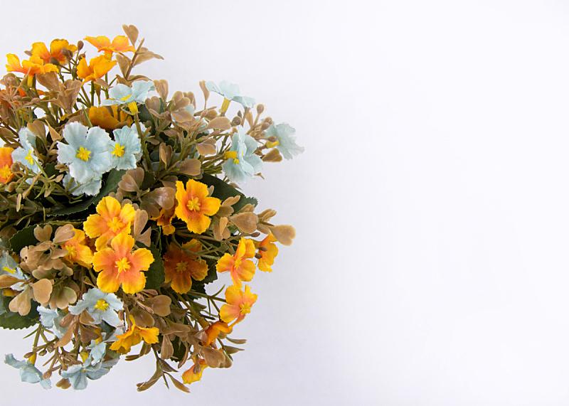 背景,人造的,花束,留白,清新,浪漫,婚礼,装饰物,植物,夏天