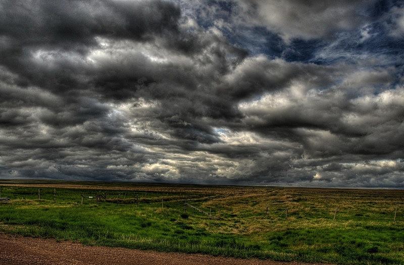 干草,田地,草原,自然,天空,草地,水平画幅,绿色,无人,色彩鲜艳