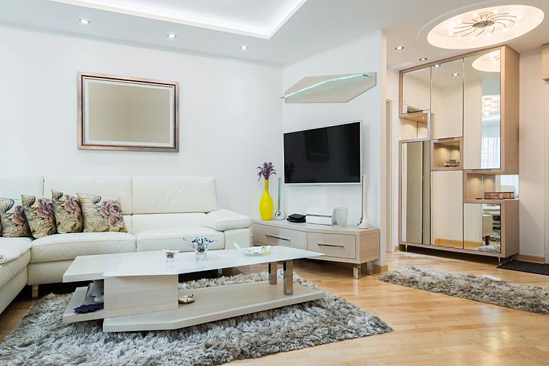 现代,室内,起居室,水平画幅,无人,地毯,灯,家具,室内植物,沙发