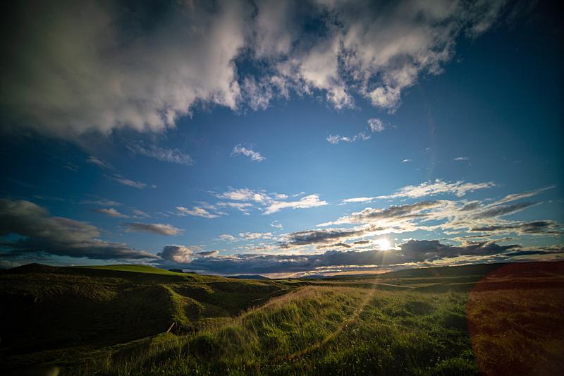 草,草地,冰岛国,早晨,绿色,背景,夏天,户外,天空,山谷
