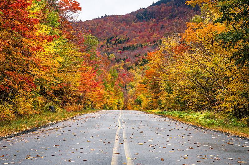 山路,秋天,风景,自然美,阿迪隆戴克山脉,秋季系列,空的路,戏剧性的景观,落叶树,多云