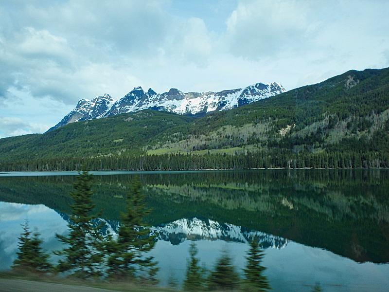 夏天,树林,克列尔湖,国内著名景点,加利福尼亚,湖,河流,针叶树,户外,天空