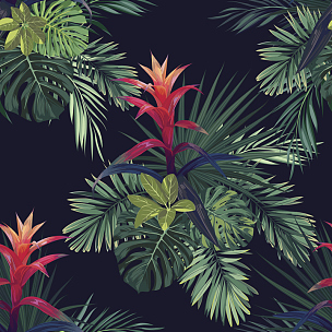 热带气候,花纹,式样,纺织品,矢量,棕榈叶,擎天属,花