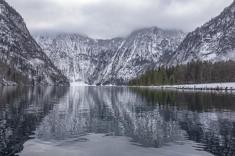 巴伐利亚,地形,户外,冬天,自然界的状态,簇叶从生的,宁静,自然,风景,图像