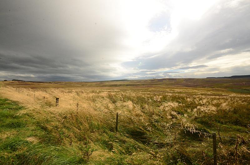 天空,切维厄特丘陵,英格兰东北部,图像,英国,草,无人,气候与心情,户外,水平画幅