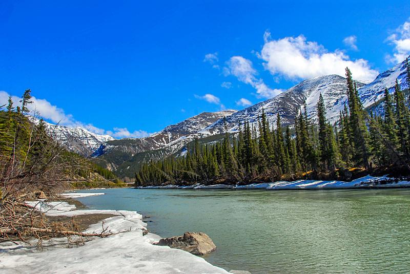 山,阿拉斯加,小溪,野生植物,春天,基奈山脉,基耐,水,天空,美