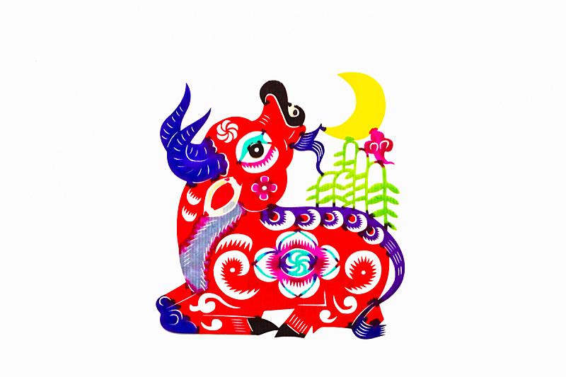 动物,传统,春节,牛年,母牛,月亮,切断