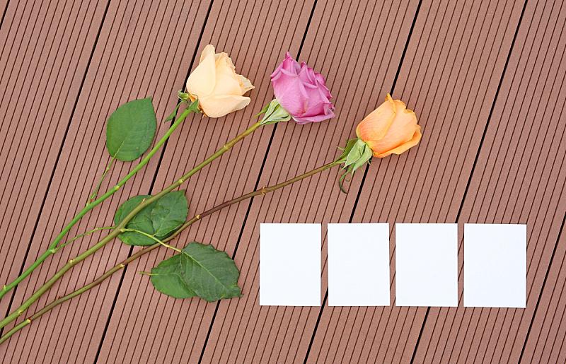 玫瑰,空的,木制,纸,欢迎标志,美,贺卡,褐色,水平画幅,花