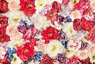多色的,大量物体,美,水平画幅,紫苑,夏天,玫瑰,特写,花束,植物