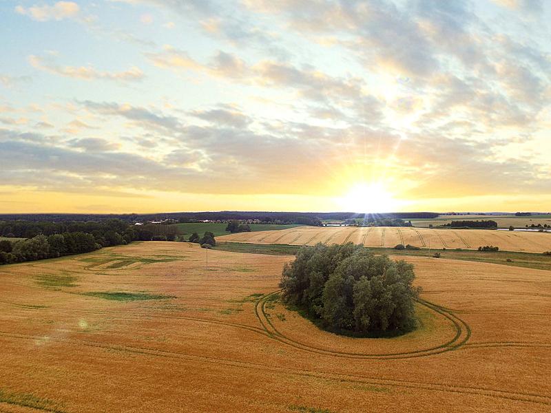 田地,黄金,航拍视角,小麦,天空,美,水平画幅,工厂,夏天,户外