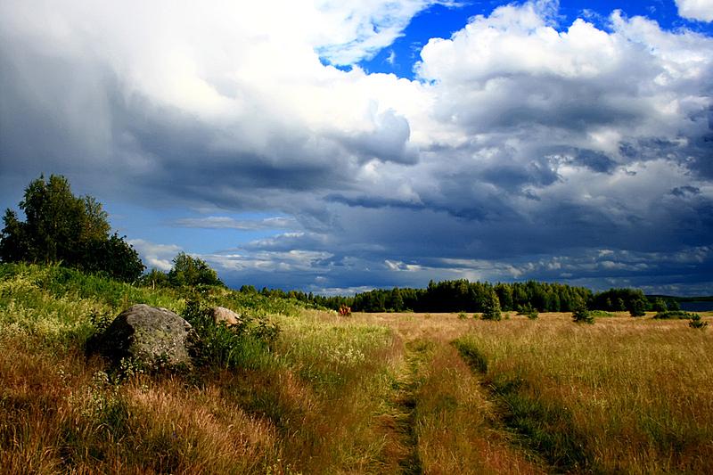 云景,俄罗斯,田地,多汁的,在上面,天空,水平画幅,古老的,工厂