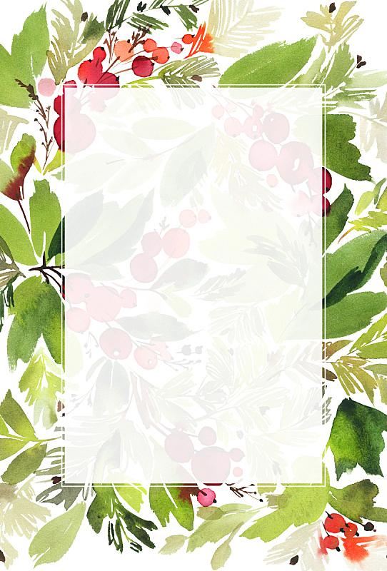 贺卡,浆果,云杉,水彩画,垂直画幅,绘画插图,新的,边框,艺术