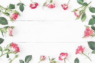 仅一朵花,边框,玫瑰,木制,平铺,白色背景,留白,高视角,夏天,想法