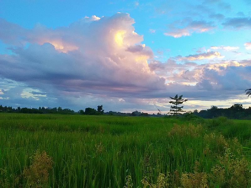 天空,云,泰国,农场,北,水平画幅,绿色,橙色,蓝色,曙暮光