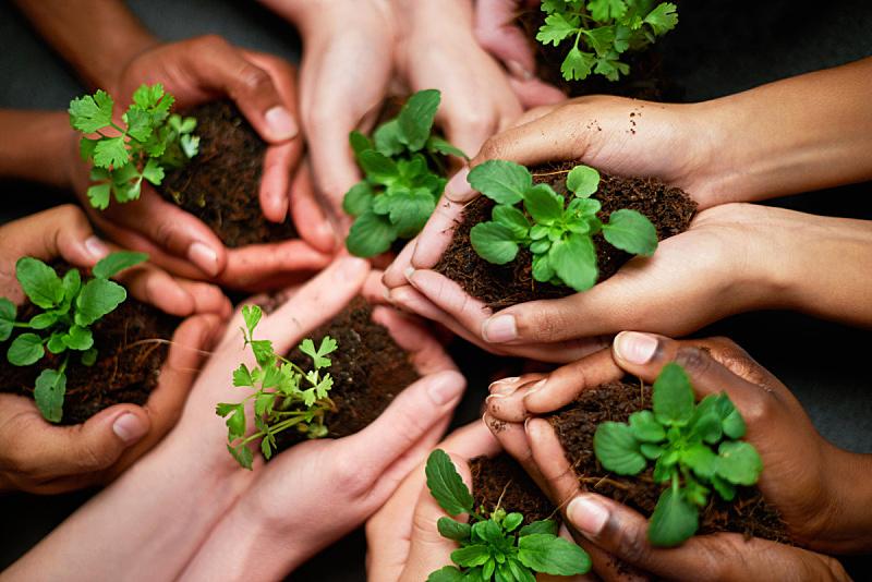 泥土,责任,环境保护,社区,园艺,行星,专门技术,多种族,留白,非裔美国人