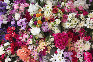 花店,牡丹,花束,康乃馨,人造的,飞燕草,马蹄莲,花烛属,银莲花,玫瑰