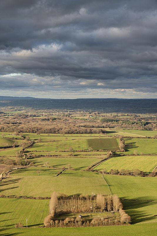 秋天,英格兰,南丘,地形,白昼,自然美,自然,季节,垂直画幅,图像