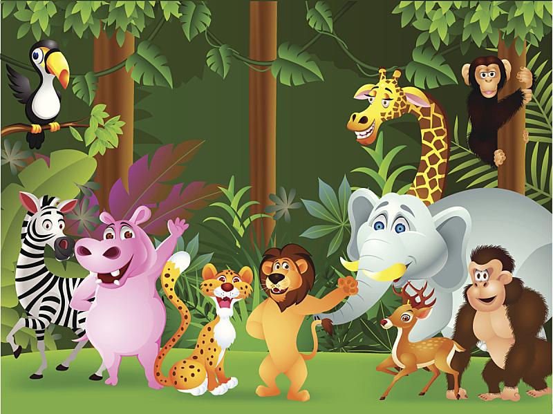 动物,卡通,猴子,斑马,野生动物,狩猎动物,猎豹,猿,狮子,哺乳纲