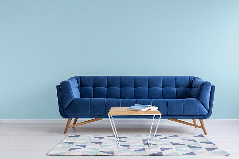极简构图,装饰物,自然美,模仿动物,起居室,沙发,茶几,蓝色