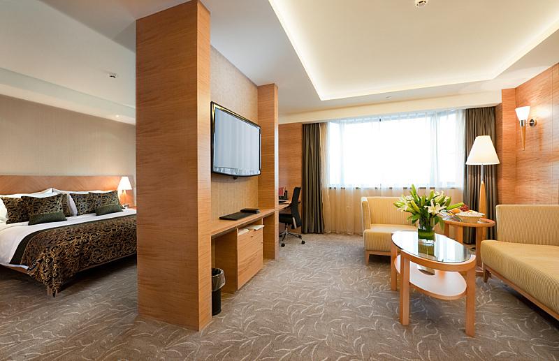 宾馆套房,室内,华贵,座位,水平画幅,无人,椅子,地毯,家具,沙发