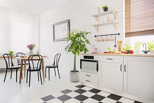 椅子,白色,植物,黑色,室内,平坦的,餐桌,几乎,花,摄影