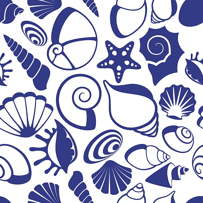贝壳,矢量,式样,海洋,海扇壳,扇贝,海星,异国情调,永远,艺术