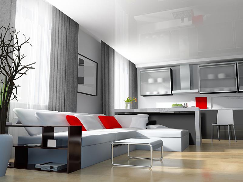 现代,室内,美,水平画幅,无人,家庭生活,家具,图像,仅一朵花