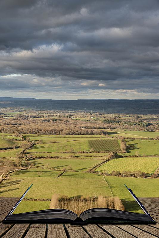 英格兰,南丘,书,书页,秋天,概念,国家公园,讲故事,地形,说话