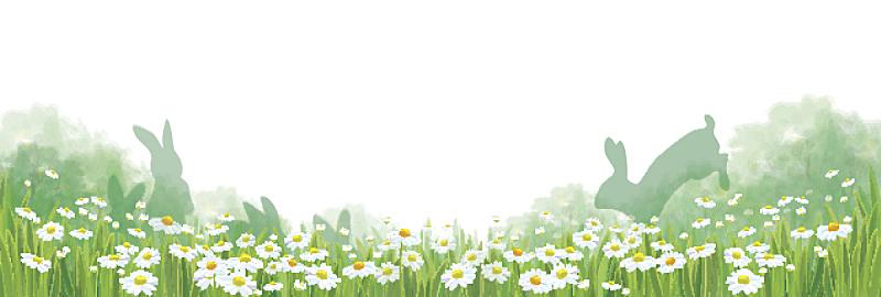 夏天,矢量,自然,背景,小兔子,复活节,边框,水平画幅,无人,绘画插图