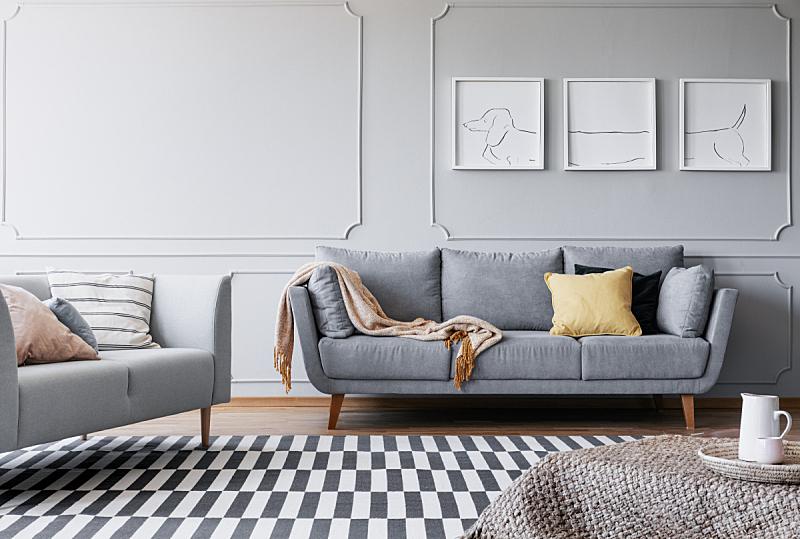 沙发,起居室,条纹,地毯,室内,三联画,宽的,纺织品,花盆,简单