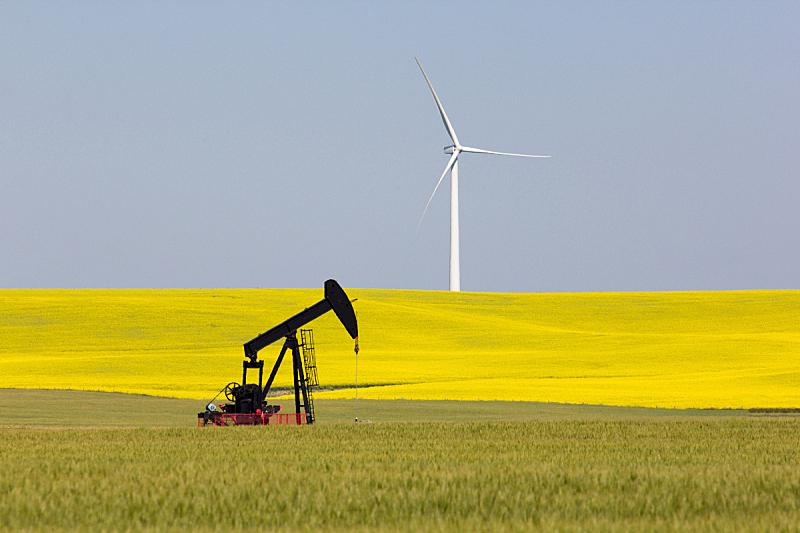风,石油工业,水平画幅,风力,阿尔伯塔省,无人,夏天,油泵,户外,芸苔