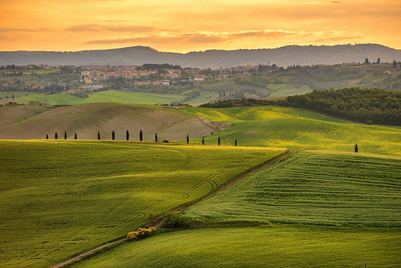 田地,地形,欧洲,托斯卡纳区,农场,意大利,绿色,天空,水平画幅,山
