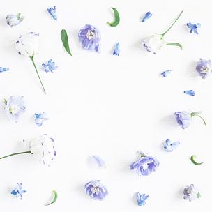 仅一朵花,边框,紫色,平铺,留白,高视角,早晨,夏天,lisianthus,想法