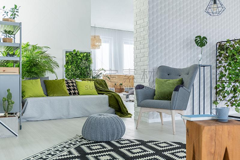 住宅房间,植物群,大量物体,跪垫,直立式花园,有围墙花园,室内设计师,板条箱,室内