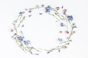 边框,干的,白色背景,野花,国际妇女节,甘菊,留白,水平画幅,古典式,夏天